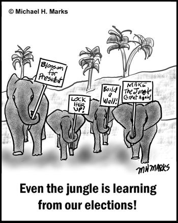 Elephant Election