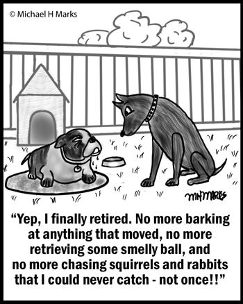 Retired dog