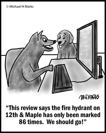 Fire hydrant reviews