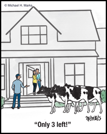 Want a cow?