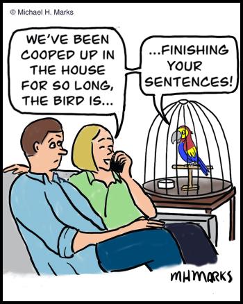 Finish sentences